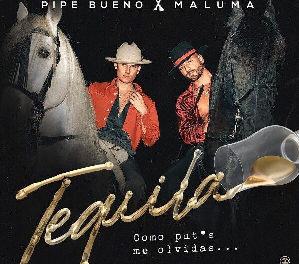 Pipe Bueno, Maluma – Tequila (Lyrics & English Translation)